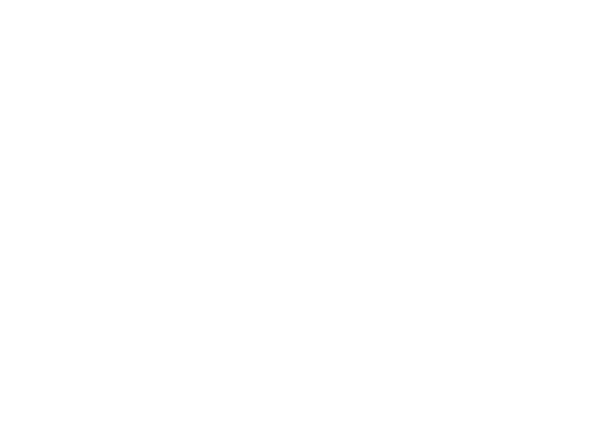 Banana Joes Logo